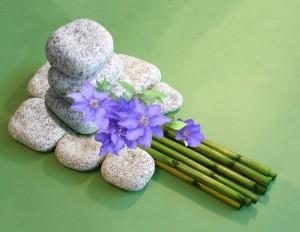 Bambus mit Clematis, Bild zu Spirituelles Yoga