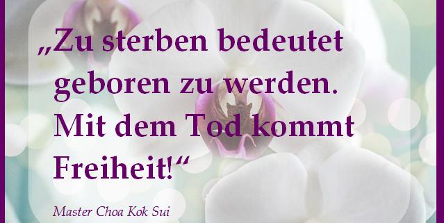 Zitat von Master Choa Kok Sui