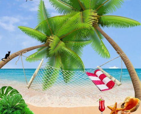 Sommer, Strand und Hängematte für unseren August Newsletter