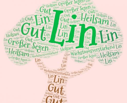 LIN-Sitzungen