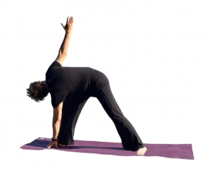 Ganzheitliches Prana Yoga